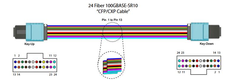 24 Fiber Multimode OM3 MPO Patch Cable